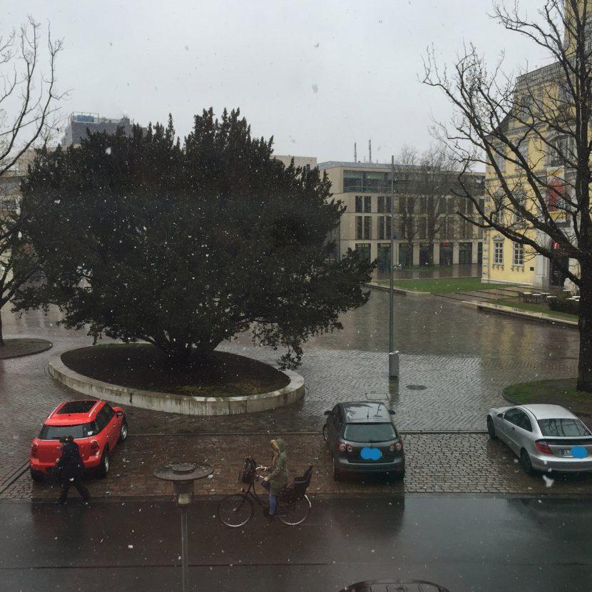 fruehling in oldenburg 830x830 - Leise rieselt der Schnee... im Frühling!