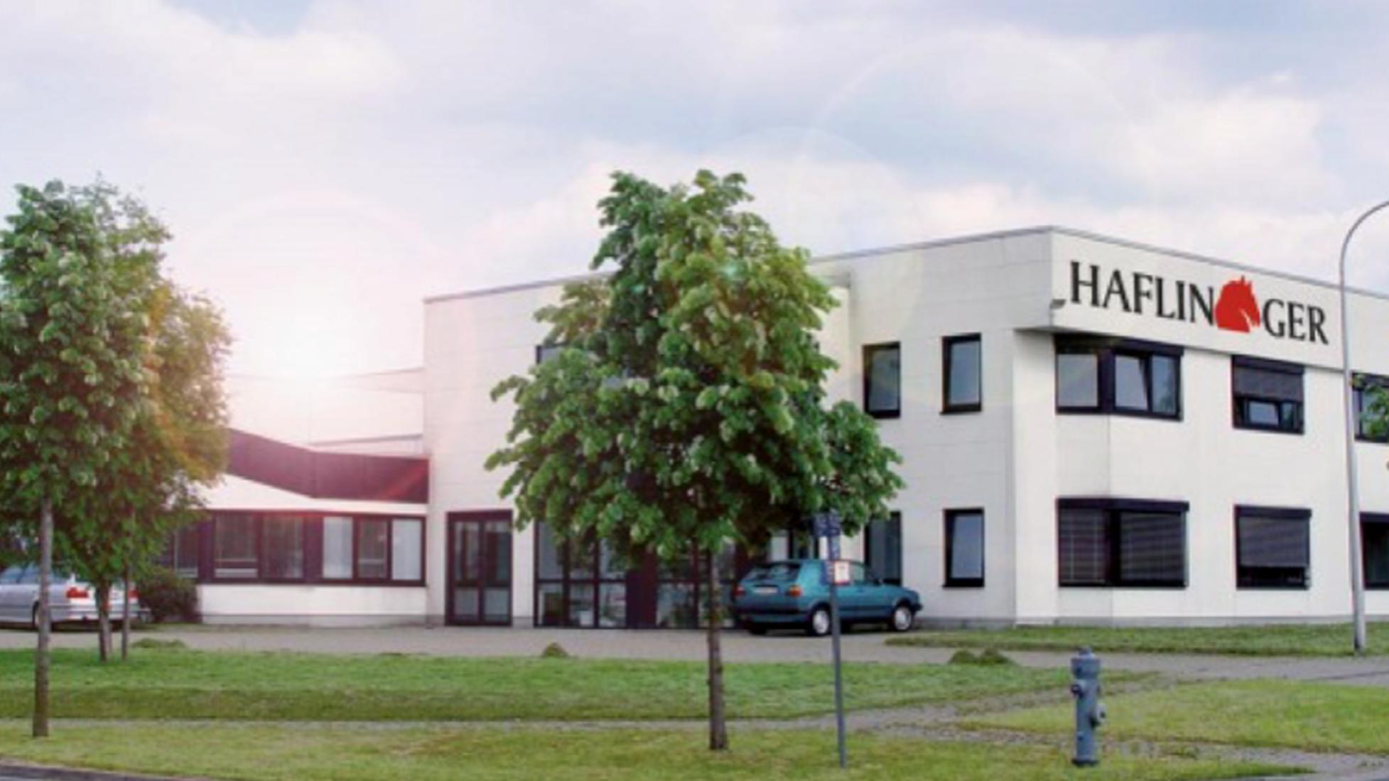 haflinger e1494673849274 - Haflinger - iesse Schuh GmbH