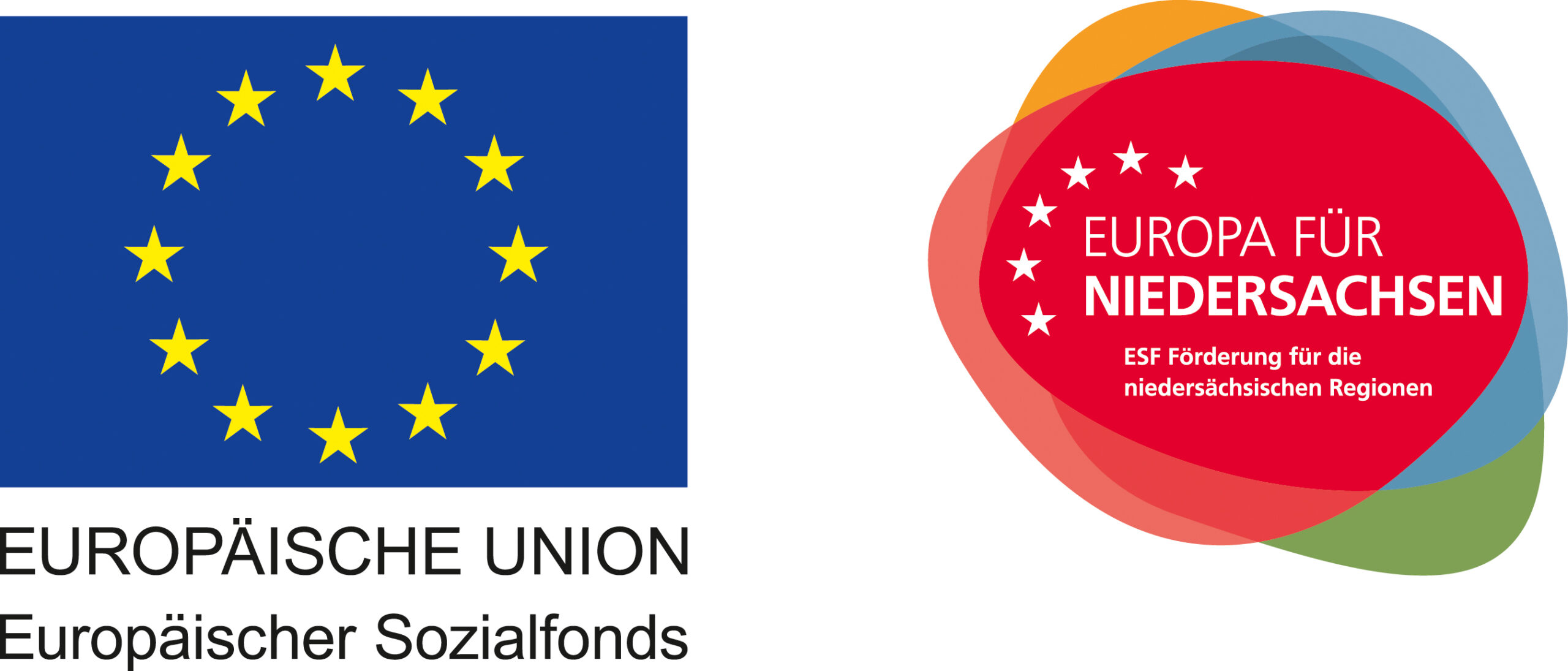 Label EU ESF scaled - Jobs bei Amagno